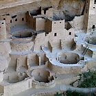 Cliff Palace, Mesa Verde by LarryGambon