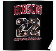 Chicago Bulls NBA - Taj Gibson v2.0 Poster