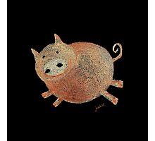 Happy Pig Photographic Print