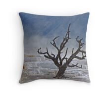 Indeterminate Age Throw Pillow