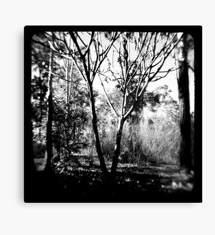 Mysterious Enchantment Canvas Print