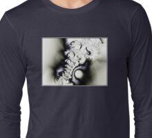 SERENDIPIDOUS CONSPIRICY TOWARD MATHEMATICAL SEDUCTION Long Sleeve T-Shirt