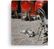 C'est une chienne de vie (It's a dog's life!) Canvas Print