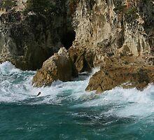 Ocean Meets Rock by Sherrianne Talon