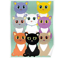Only Eight Cats Poster