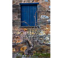 Winery Window Photographic Print