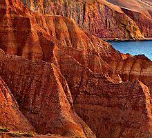 Cactus Canyon, Sellick Beach by David Creed