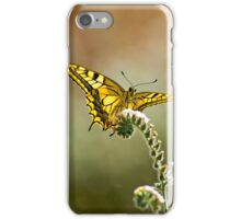 Common yellow swallowtail (Papilio machaon) butterfly  iPhone Case/Skin