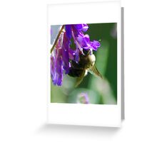 Bumble Bloom Greeting Card