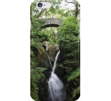 View from the Bridge iPhone Case/Skin