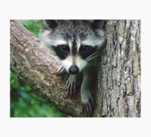 RACCOON PORTRAIT WITH PAWS & CLAWS  Kids Clothes