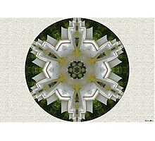 Flowers Mandala Photographic Print
