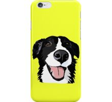 Smiley collie iPhone Case/Skin