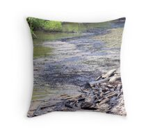 NOLA Oil Spill: Oil In The Sand Throw Pillow