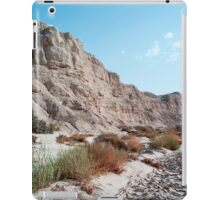 zin valley, negev desert, israel iPad Case/Skin
