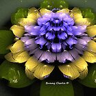 Fractal Waterlily by Bunny Clarke