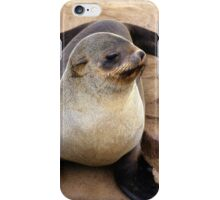 Cape fur seal (Arctocephalus pusillus) iPhone Case/Skin