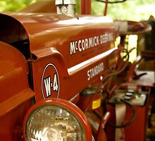 McCormick Red by wonderfulworld