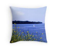 Lake Ontario Throw Pillow