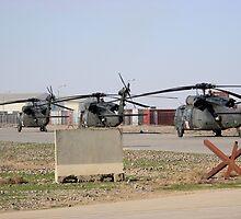 Med Evac Choppers by Robert Phelps
