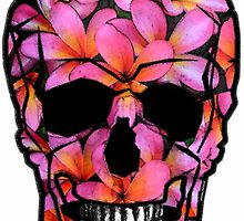 Skull with Pink Frangipani Flowers by amanda metalcat dodds