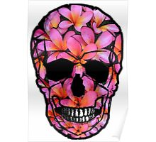 Skull with Pink Frangipani Flowers Poster