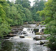 Aysgarth Falls by dougie1