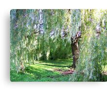 Willow Sanctuary Canvas Print