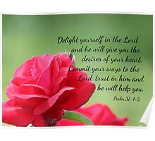 Red Rose with Psalm 37:4-5 Poster