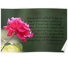 Pink Rose with 1 Corinthians 13:4-7 Poster