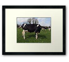 County Clare farm scene Framed Print