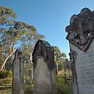 Collits Cemetary, Hartley Vale by Blue Gum Pictures