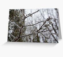 Frozen Season Greeting Card