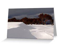 wintry shadows Greeting Card
