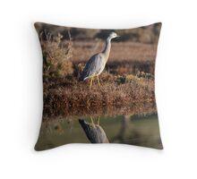 Whit Faced Heron, Ralphs Bay Tasmania Throw Pillow