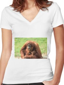Sumatran orangutan mother with infant In a zoo Women's Fitted V-Neck T-Shirt