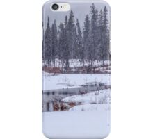 Springtime in Alaska! iPhone Case/Skin