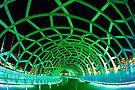 Webb Bridge Green by Travis Easton