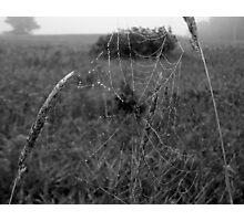 Black and White Web Photographic Print