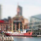 Chintzy Chesapeake by Judi FitzPatrick