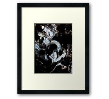 rusty roots Framed Print