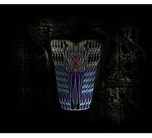 Orus Illusion Photographic Print