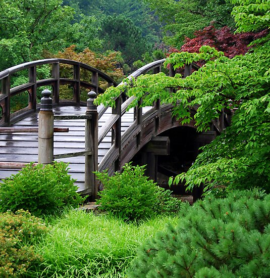 Crossing paths... by LjMaxx