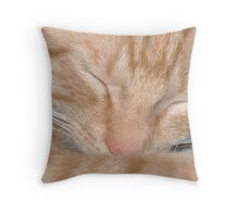 Sleeping Cutie Throw Pillow