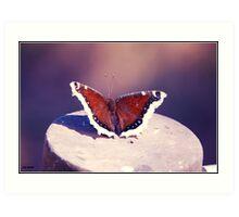 Marvelous Moth: Famosa Slough Art Print