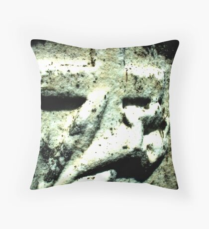 Aging Remnant Throw Pillow
