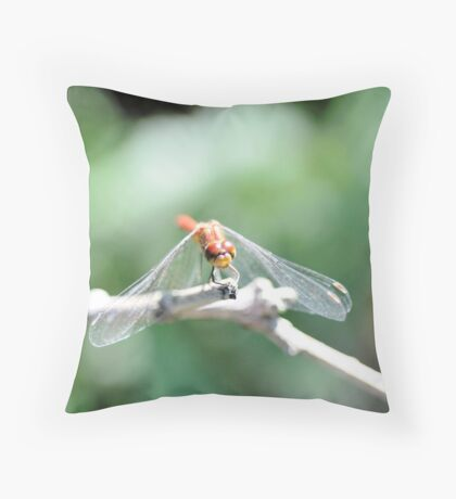 Lonely Dragon One Throw Pillow