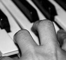 Hand and keyboard by Martina Fagan