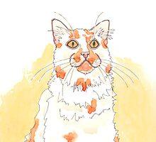 Cat Whiskers by artworkbySARA
