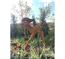 Bambi tapestry - Epcot  Photographic Print